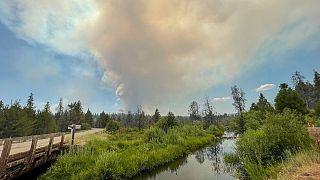 Les incendies de forêt dans l'ouest des États-Unis et au Canada, frappés par la sécheresse, continuent de roussir de vastes zones. 18/07/2021.