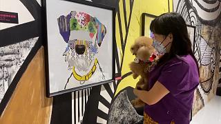 Pet owner looking at artworks with her dog