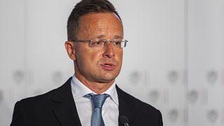 Szijjártó Péter külgazdasági és külügyminiszter az osztrák-cseh-magyar-szlovák-szlovén külügyminiszteri találkozón 2021. július 20-án