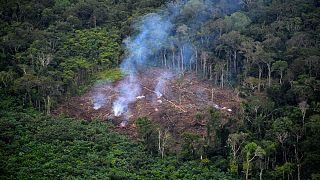 Vue aérienne de la déforestation illégale dans le parc national naturel de La Macarena, Colombie, le 3 septembre 2020.