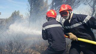 عکس تزئینی از مهار آتش در بوته زارهای جنوب فرانسه