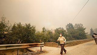 Antalya'nın Manavgat ilçesinde yangın