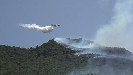 Villagers evacuated as firefighters combat wildfire in Peloponnese forests
