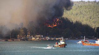 Лесной пожар в провинции Бодрум