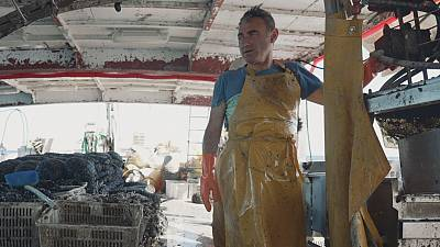 Captain Davide Sanulli and his crew harvest mussels off the coast of Emilia-Romagna in Italy.