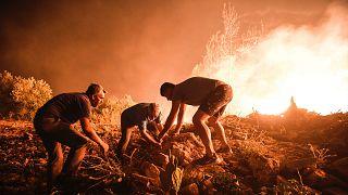 Türkiye'de orman yangınları