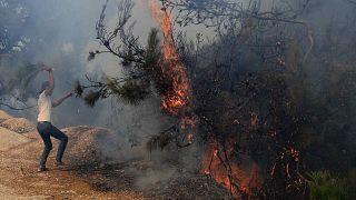 رجل يحاول إطفاء حريق غابة في قرية القبيات بمحافظة عكار شمال لبنان، الخميس 29 تموز 2021