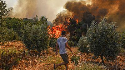 A man walks toward wildfires in Kacarlar village near the Mediterranean coastal town of Manavgat, Antalya, Turkey, Saturday, July 31, 2021.