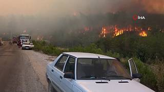 Turkey: Forest workers killed in wildfires