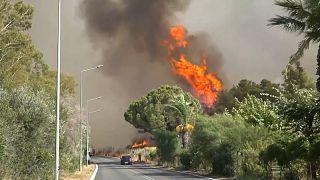 La Sicilia brucia ancora. 6 le vittime in Turchia. Roghi anche in Grecia