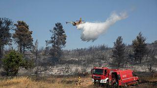 Yunanistan'ın Patras kenti yakınlarında çıkan yangın nedeniyle onlarca ev küle döndü
