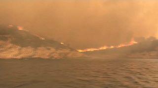 Bodrum'da yangınla mücadele