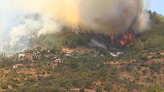 Μεγάλες δασικές πυρκαγιές σε χώρες της νότιας Ευρώπης