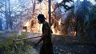 Un incendio boschivo nella zona di Adames, a nord di Atene, Grecia