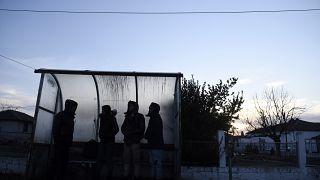 مهاجران افغان در نزدیکی مرز بین ترکیه و یونان