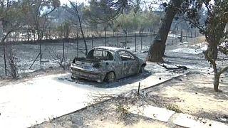 """Сгорели """"легкие"""" Аттики: лесные пожары в Греции"""