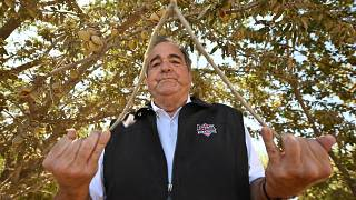 ديفيد ساغوسب يقف لالتقاط صورة تحت شجرة لوز في ولاية كاليفورنيا.