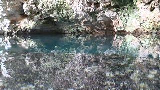Uno de los miles de cenotes de la península de Yucatán, en México.