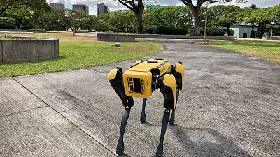 Photo depicts a robotic dog in Honolulu which is being used to take homeless people's temperatures.