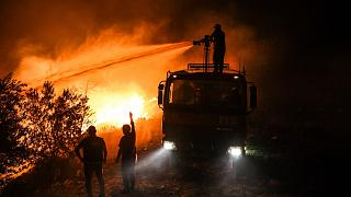 Antalya'nın Manavgat ilçesinde orman yangınına müdahale eden itfaiye erleri
