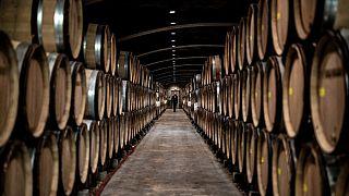 chai du Domaine Bouchard Pere et Fils, à Savigny-Les-Beaune, en Bourgogne