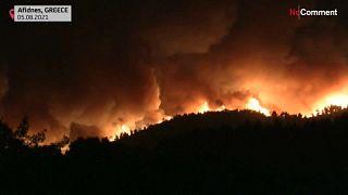 Waldbrand in Afidnes, nördlich von Athen