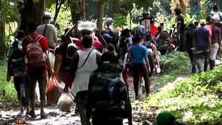 Un grupo de personas migrantes atraviesa la selva del Tapón del Darién, entre Colombia y Panamá.