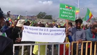 Ethiopian govt supporters protest against Tigray rebels