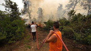 Incendies de la Calabre à la Sibérie, la fumée des feux de forêt atteint le pôle Nord