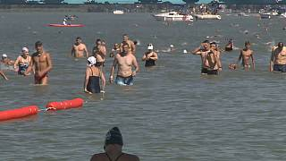 Swimmers participating to this year's Balaton Cross Swimming on August 7, 2021.