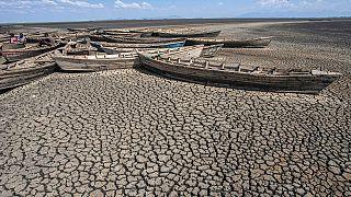 Malawi : le lac Chilwa toujours plus asséché