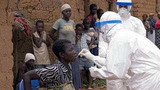 WHO experts head to Guinea after Marburg virus case