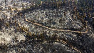 586 incendi in una settimana: l'Odissea senza fine della Grecia