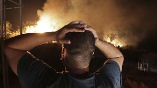 Dozens killed in wildfires in Algeria