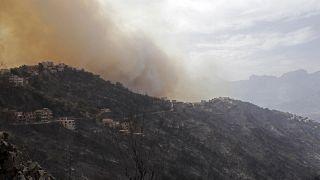Дым от пожаров в Кабилии