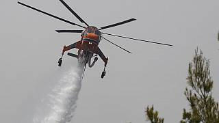 An helicopter drops water over a fire in Galatsonas village on Evia island, about 184 kilometers (115 miles) north of Athens, Greece, Wednesday, Aug. 11, 2021.
