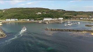 Irlande du Nord : une île bientôt neutre en carbone?