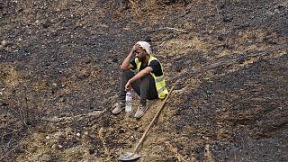 Les incendies laissent derrière eux un paysage de désolation dans les montagnes de Kabylie (Algérie), le 11/08/2021