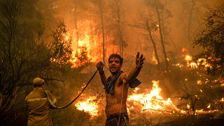 De Argelia a Siberia, los incendios devoran hectáreas y siegan vidas