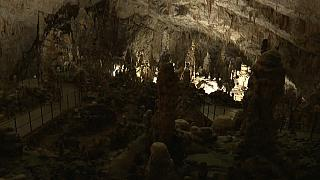 El paraíso subterráneo que descubrió los primeros animales cavernícolas