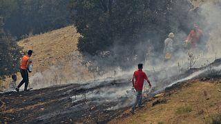 L'Algérie continue de lutter contre 19 feux de forêt