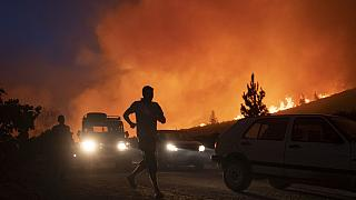 Forest fires rage in northern Morocco