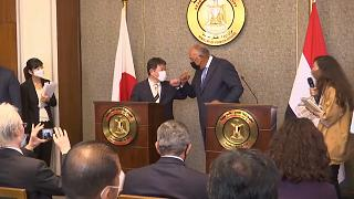 Egypt, Japan foreign ministers discuss cooperation to solve regional issues