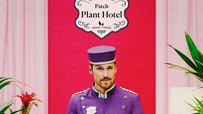 Welcome to the Patch Plant Hotel: the perfect getaway for your greeneries