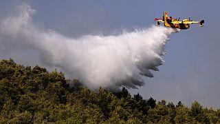 Atina yakınlarındaki orman yangını