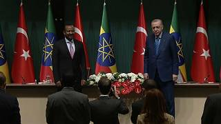 Erdogan calls for a peaceful resolution to Ethiopia's Tigray conflict