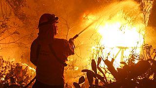 Californie : deux incendies ravagent le nord de l'Etat