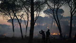 Пожар на юге Франции