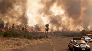 Múltiples incendios forestales han hecho estragos en los últimos días en todo Paraguay destruyendo miles de hectáreas de humedales protegidos.
