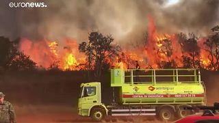 Dél-Amerikában is pusztítanak a tüzek